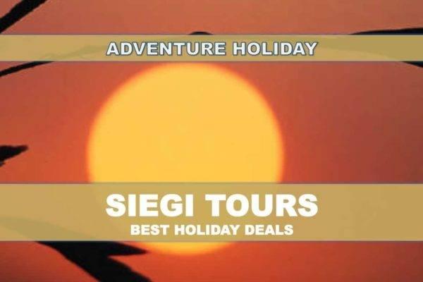 Zip Line Adventure Salzburg Siegi Tours Holidays